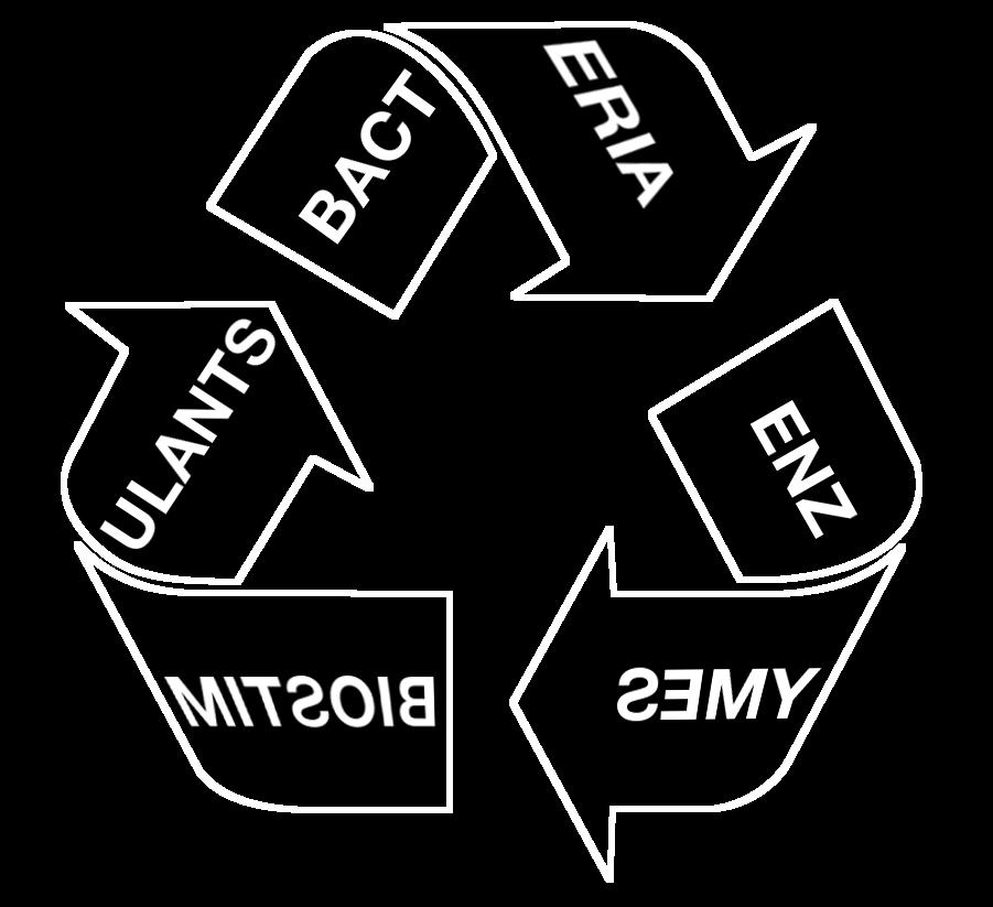 Evira3 Components