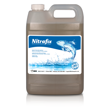 Nitrifying Bacteria in Lakes and Ponds